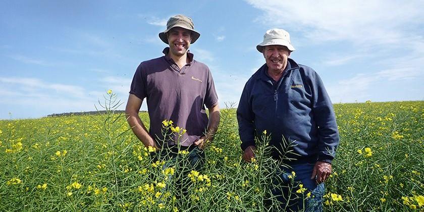 パルシステムが産直協定を結ぶ南オーストラリア州カンガルー島の菜種畑