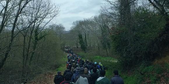 林の中を歩く難民の列