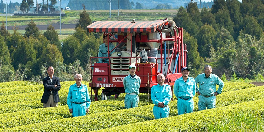 茶畑に集う「塗木製茶工場」のメンバー